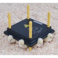 Lämpölevy termostaatilla 15W / 15-20 poikaselle
